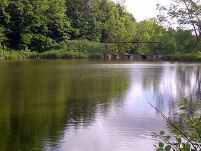 Our Mill Pond on the Bruce Trail